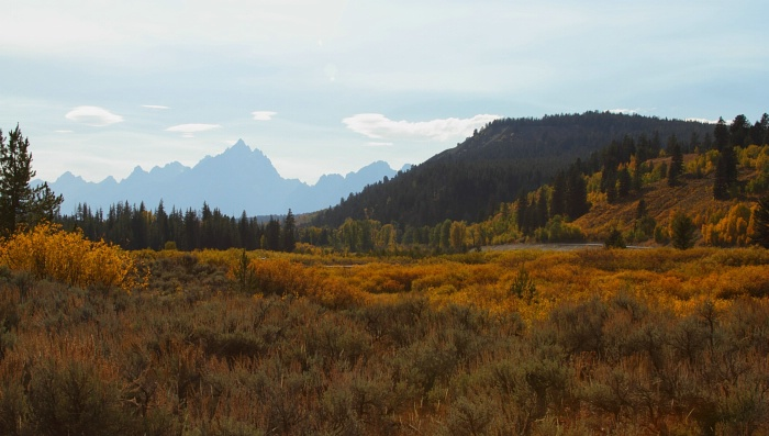 Grand Teton National Park,  9.24.11 - ID: 12439050 © Michael S. Couch