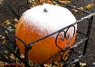 Snow On The Pumpk...