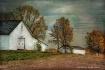 White Barn Farm