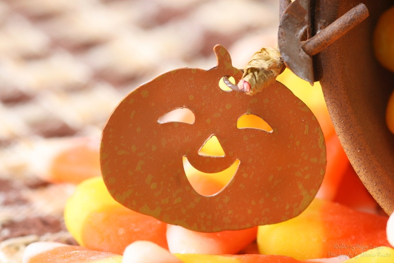~More Candy Corn Smiles~