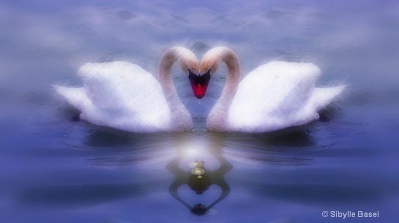 Forever Love.... - ID: 12461352 © Sibylle Basel