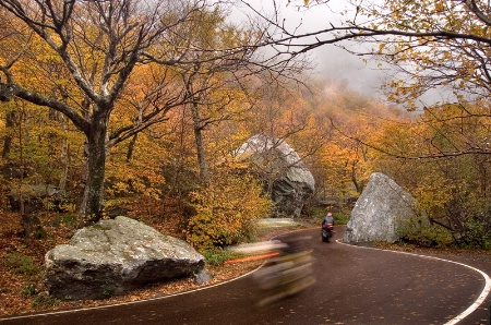Two Riders in Autumn
