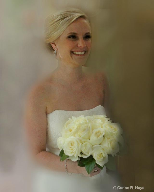 D-Bride - ID: 12483097 © Carlos R. Naya