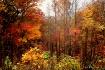 Autumn in Roanoke