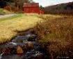 Rural Serenity