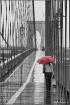 Brooklyn Bridge -...