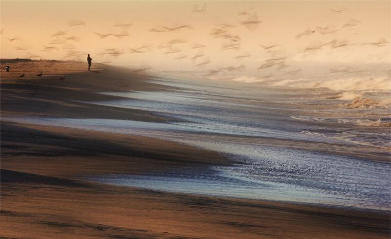 Surf Fishing - ID: 12504382 © Craig W. Myers