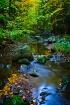 Creek in Blue Hil...