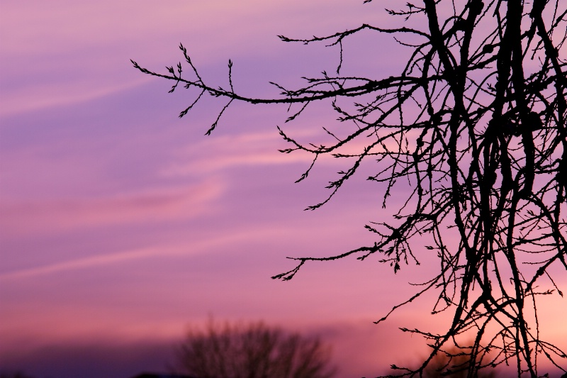 South Dakota Sunset.