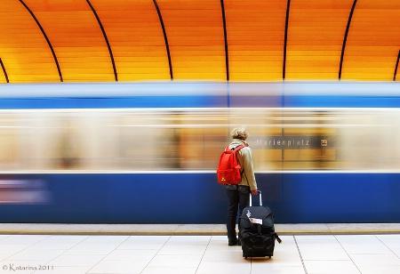 Photography Contest Grand Prize Winner - November 2011: Traveler