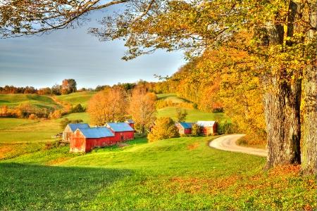 Jenne Farm 2