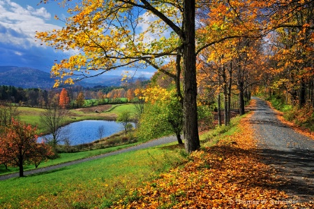 """""""Cloudland Road"""" ~ Pomfret Vermont"""