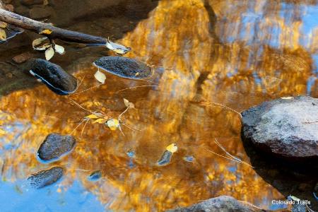 Reflective Pool