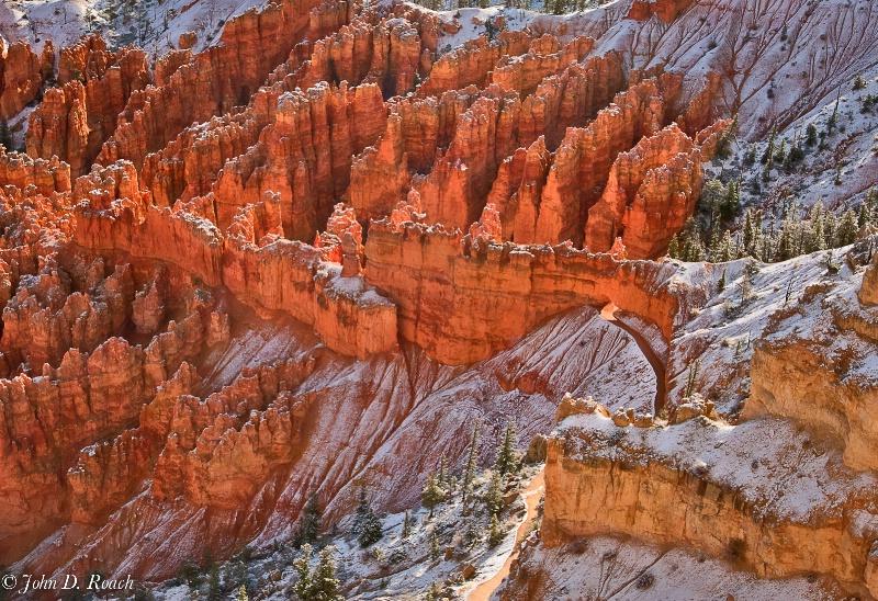 Bryce Canyon Trail - ID: 12563953 © John D. Roach