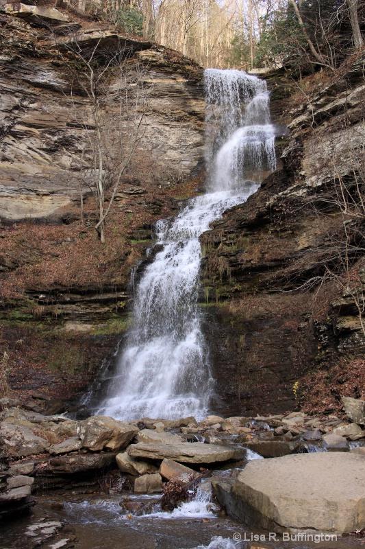 Waterfall on Gauley Mountain in WV - ID: 12567766 © Lisa R. Buffington