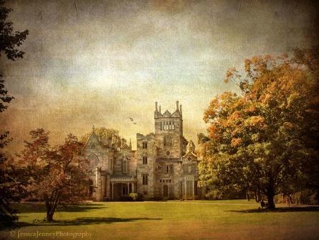 Autumn at Lyndhurst