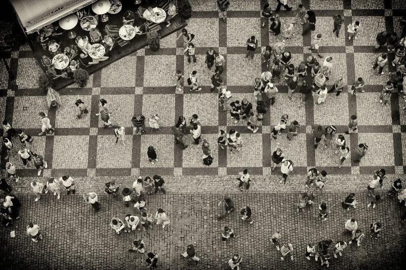 Ants ? - ID: 12579271 © David Resnikoff