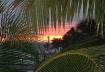 Sunset at Key Wes...