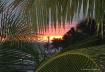 Sunset, Key West
