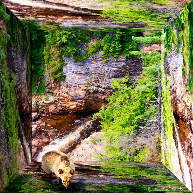 Russian Bear - ID: 12609025 © Eleanore J. Hilferty