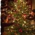 © Sibylle G. Mattern PhotoID # 12628904: Me Myself I: Decorating the Christmas Tree