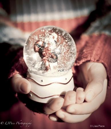 Magic of Snow Globes