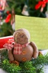~Gingerbread Chri...