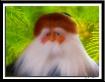 Santa Retired