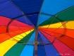 Umbrella Abstract...