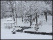 Winter in the par...