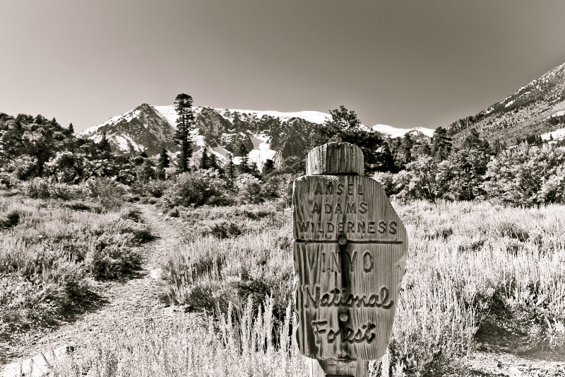 Ansel Adams Wilderness Trail to Parker Lake