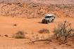 Life Of Desert
