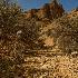 © Beth OMeara PhotoID# 12843649: Owyhees - Dry creek bed