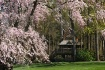 Spring retreat