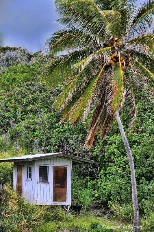 Big Island Little Shack - ID: 12897535 © Suzanne Andrews