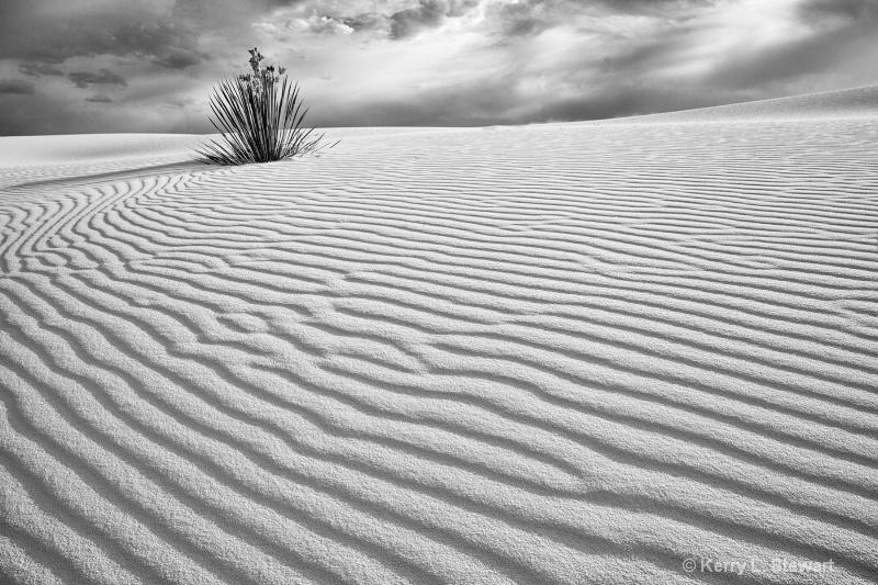 White Sands Image 5 - ID: 12962164 © Kerry L. Stewart