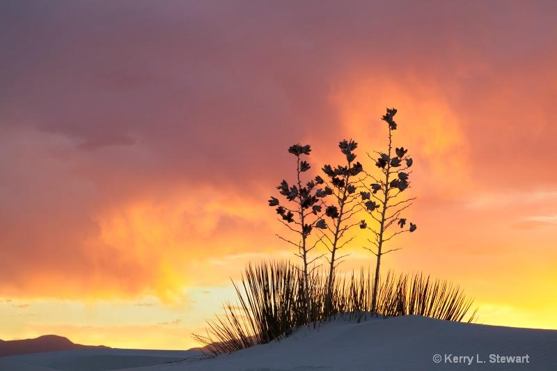 White Sands Image 8 - ID: 12962166 © Kerry L. Stewart