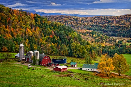 Hillside Acres Farm