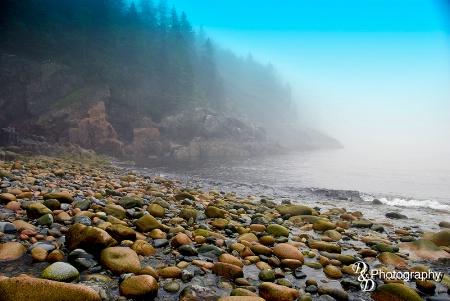 Hunters Beach,Acadia National Park,ME