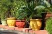 Pots in a Row