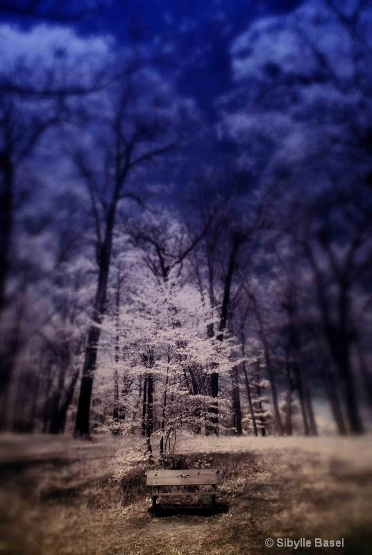 Bench - ID: 13002888 © Sibylle Basel
