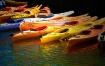 Kayak's Color...