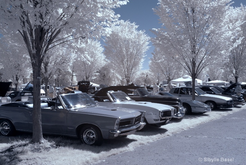 Classic Cars in IR - ID: 13057453 © Sibylle Basel