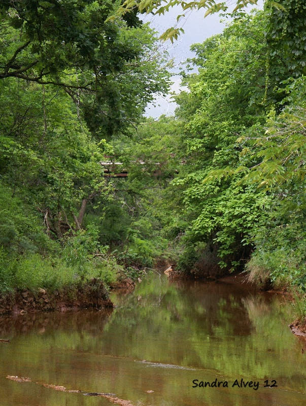 The Hidden Bridge, Martin Nature Reserve, OKC