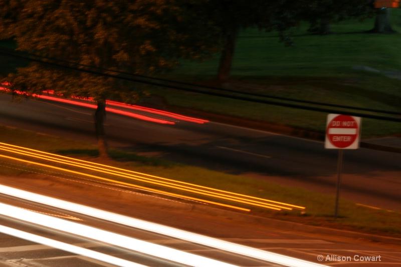 Savannah Lights