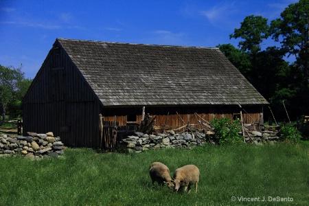 Coggeshall Farm, Rhode Island