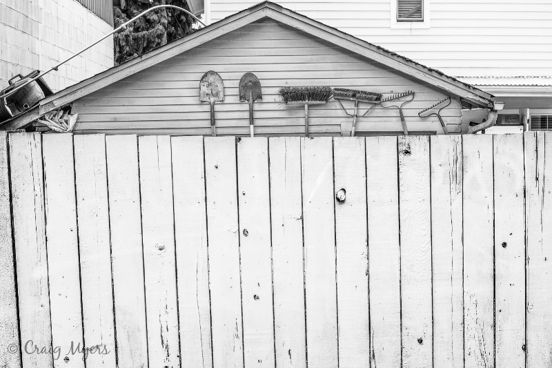Backyard Lineup - ID: 13134352 © Craig W. Myers