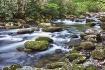 Greenbriar Creek