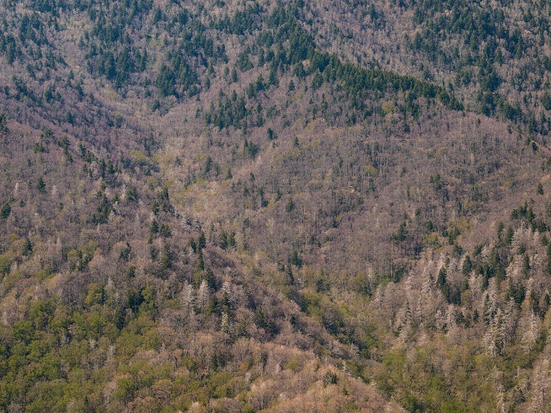 Mountainside Tapestry - ID: 13154873 © Philip B. Ludwig
