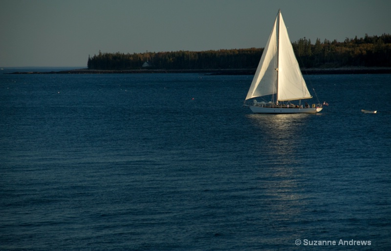 Sailing - ID: 13170547 © Suzanne Andrews